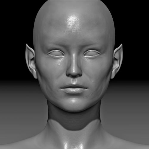 Female Elf – skin detail